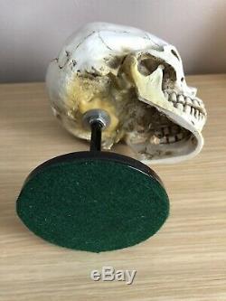 Crâne D'affichage Casque Stand U. S Allemand Ww2 Chapeaux Vietnam Usmc Para Sas Raf Armée